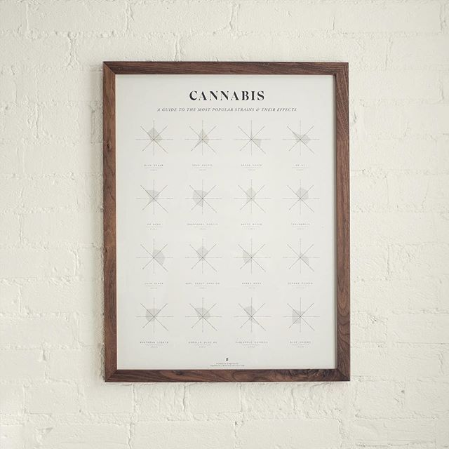 One of our favorites:  CANNABIS EFFECTS WHEELS - an #infographic that displays the effects of 16 of the worlds most popular #strains.  #digitalart #arte #illustration #artprint #artoftheday #poster #printlife #print #cannabis #cannabiscommunity #cannabisc