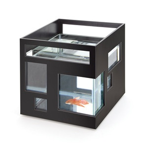 Fishhotel Fishbowl Black, now featured on Fab.
