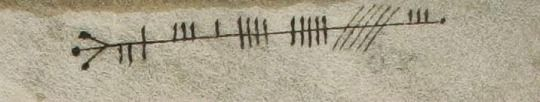 From a 9th century Irish manuscript, the phrase 'massive hangover' (Latheirt) written in the ancient Irish text Ogham.