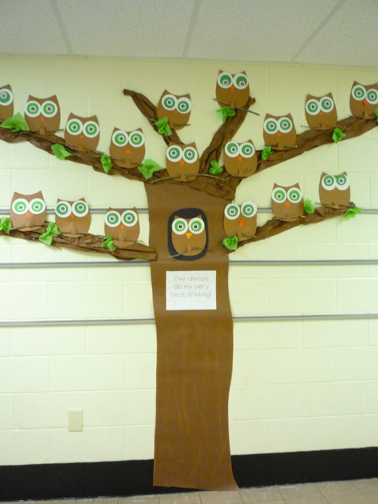 Owl bulletin board or hall decorations.Baby Shower