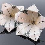 Craig Folds Five Dollar Origami