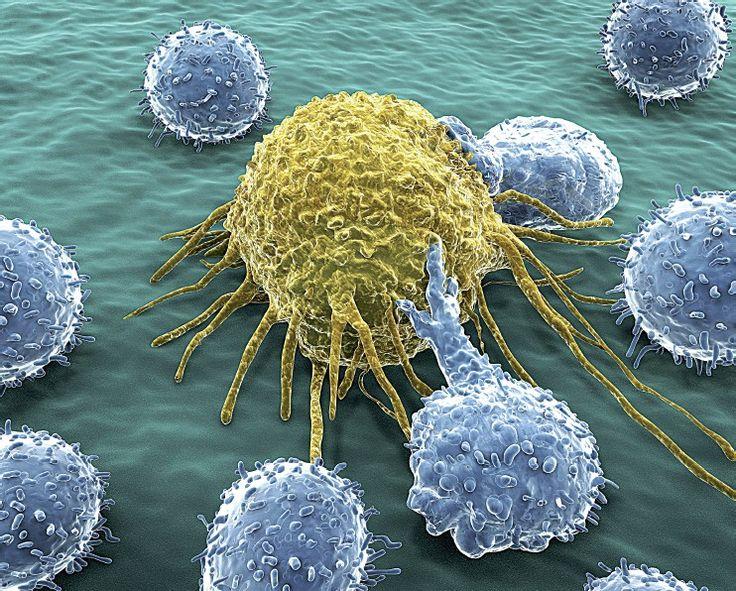 Vaccino contro il tumore al seno: i primi risultati sono incoraggianti!