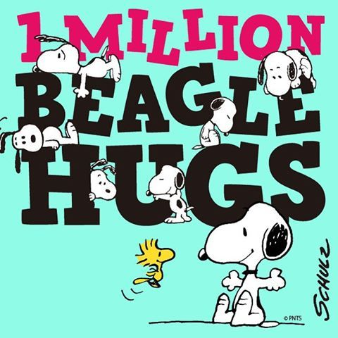 Image result for snoopy monday images