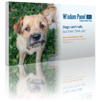 Wisdom Panel® 4.0 Canine Genetic Test. The Wisdom Panel 4.0 Canine DNA Test provides you with information to plan for your dog's unique nutrition, training and even healthcare.