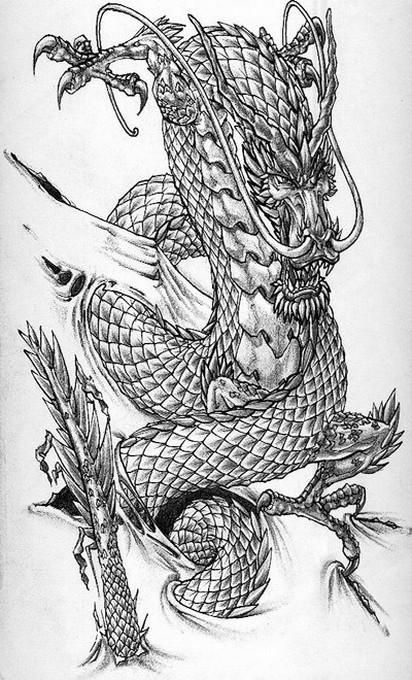 dragon tattoos google search dragon pas gentil pinterest tatouage japonaise tatouages. Black Bedroom Furniture Sets. Home Design Ideas