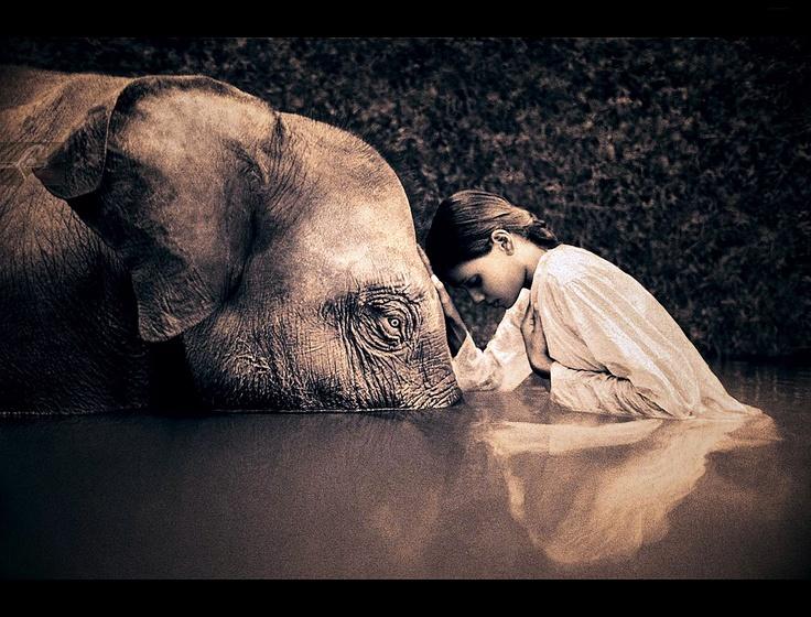 Stille aanraking met Gnostiek - In Silent Touch with Gnosis: Innerlijke Vrede (Peace in mind)