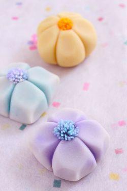 Japanese Sweets, flower wagashi