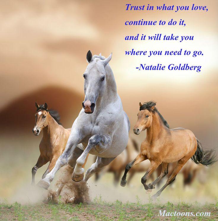 My special friend friendship friend friendship quote friendship - 78 Best Images About Horse Memes On Pinterest Horse