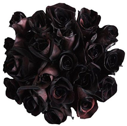 12 Fresh Cut Black Roses | I Want It Black