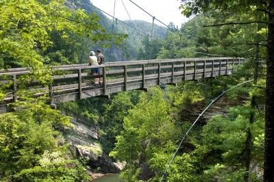 Showcasing Georgia's scenic beauty, these seven adventures explore the state's natural wonders.