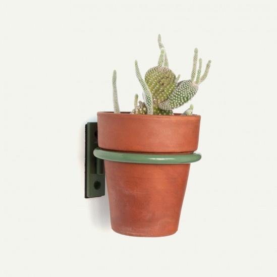 plant ring, by makr: Fancy Plants, Cute Ideas, Plants Rings, Carrie Plot, Plants Holders, Avocado Powder, Coats Steel, Plants Wall, Makr Plants