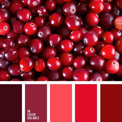 алый, бордовый, монохромная красная цветовая палитра, монохромная цветовая палитра, оранжево-красный, оттенки красного, подбор цвета, розовый и красный, цвет вина, цветовое решение для гостиной, цветовое решение для текстиля.