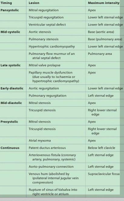 cardiac murmur summary