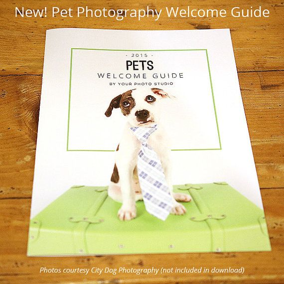 34 best Photographer Welcome Packets images on Pinterest - manual cover page template