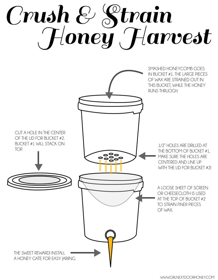 Crush and strain method for honey harvesting, how to! #beekeeping #honey #diy
