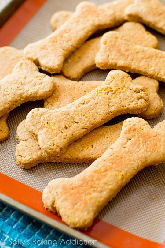 Homemade Dog Food Recipes For Chihuahuas