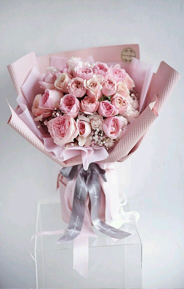 Flowers おしゃれまとめの人気アイデア Pinterest Ghada Moustafa