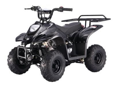 Taotao BoulderB1 110cc Kids ATV