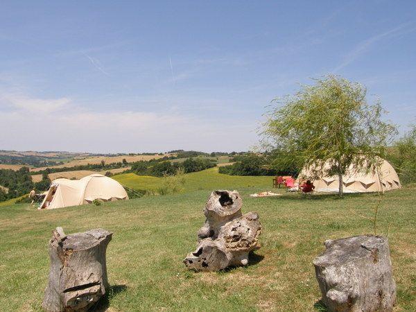 Leuke camping met prachtige plekken