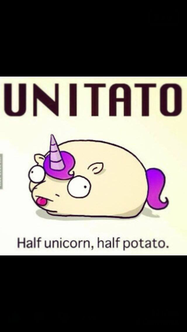 38 best Unicorns!!! images on Pinterest | Ha ha, Random ...