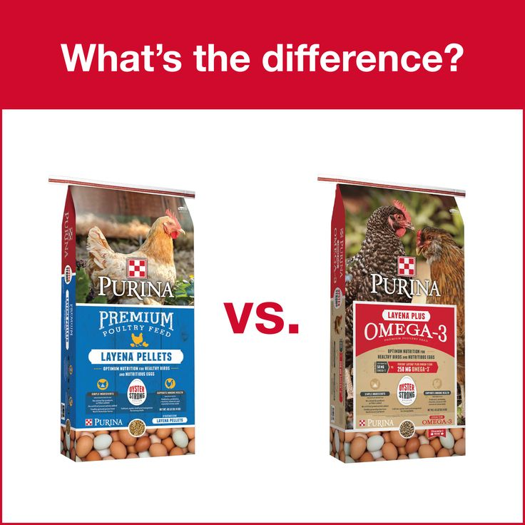 Q: What's the difference between Purina® Layena® and Purina® Layena® Plus Omega-3?  A: The difference is omega-3 and, in turn, egg nutrition. With Layena® Plus Omega-3, hens can produce eggs with 250 mg of omega-3! (When fed a diet of Layena® Plus Omega-3 exclusively for at least 3 weeks. Based on large egg (56 g). Results may vary with factors such as total diet and hen health. A typical store bought egg ccontains 50 mg of Omega-3 fatty acids per large Egg (USDA: National Nutrient Base).)