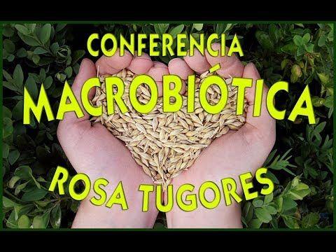 Qué es la Macrobiótica?