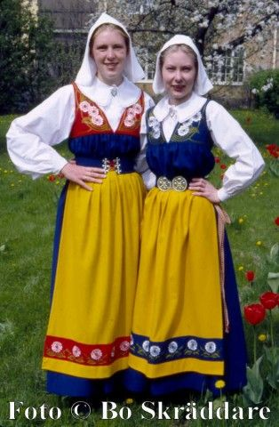 Google Image Result for http://1.bp.blogspot.com/__pQeg4Crnkc/TJa41qfydAI/AAAAAAAAA38/PxMIW9A_H7U/s1600/swedish%2Bnat%2B.jpg