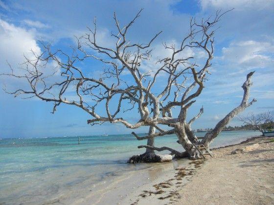 Mahahual,Quintana Roo, México.