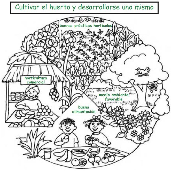 Dibujos De Huertos Escolares Para Colorear Imagui Huerto En 2019