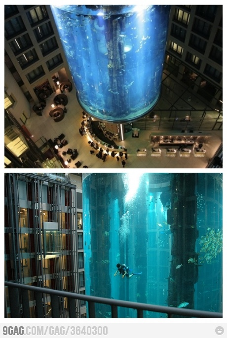 40 best cool fish tanks images on pinterest for Fish hotel tank
