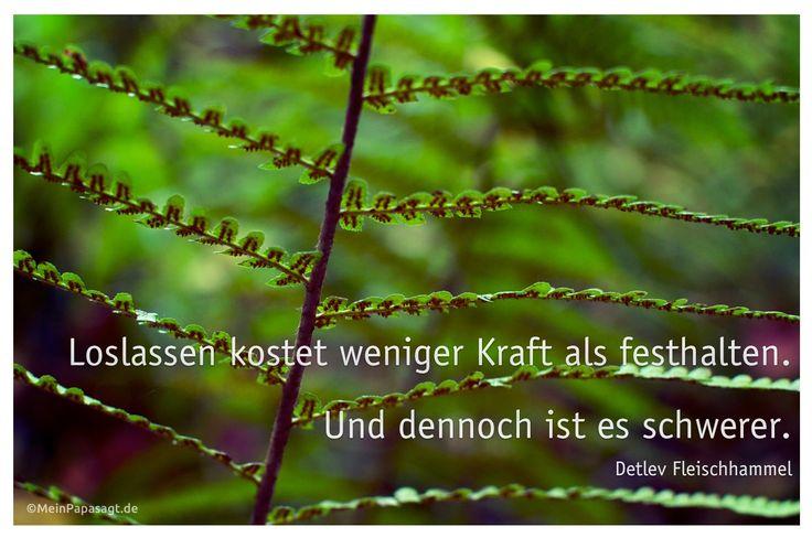 Mein Papa sagt... Loslassen kostet weniger Kraft als festhalten. Und dennoch ist es schwerer. Detlev Fleischhammel #Zitate #deutsch #quotes Weisheiten Zitate TÄGLICH NEU auf www.MeinPapasagt.de