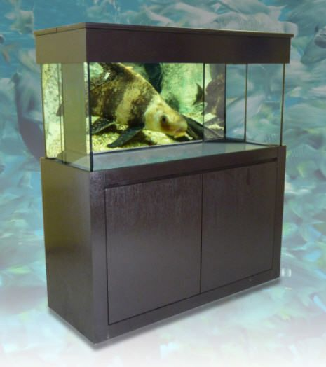 17 best images about aquarium on pinterest fish for Fish tank cabinets