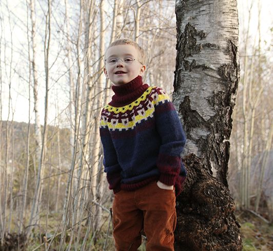 Pickles - Knight's Sweater - Knitting Pattern/Yarn Kit