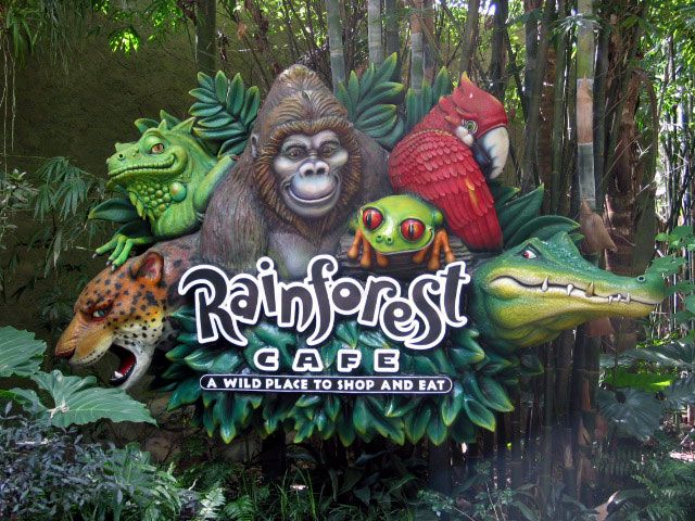 Rainforest Cafe at Disney's Animal Kingdom