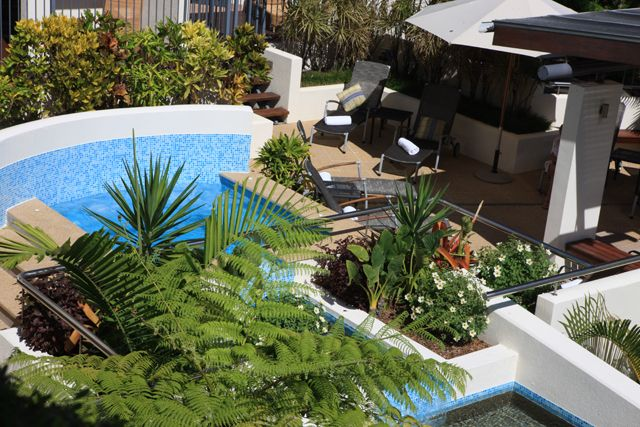 Peninsula Boutique Hotel from $380 p/n Visit http://www.fnqapartments.com/specials-port-douglas/ #portdouglasspecials