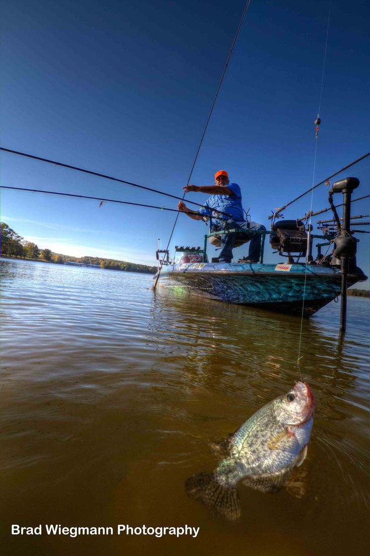 25 Best Ideas About Crappie Rigs On Pinterest Crappie