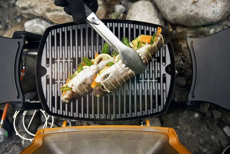 Pulled Pork Weber Gasgrill Q 1200 : 34 best weber produktneuheiten 2016 images on pinterest grill