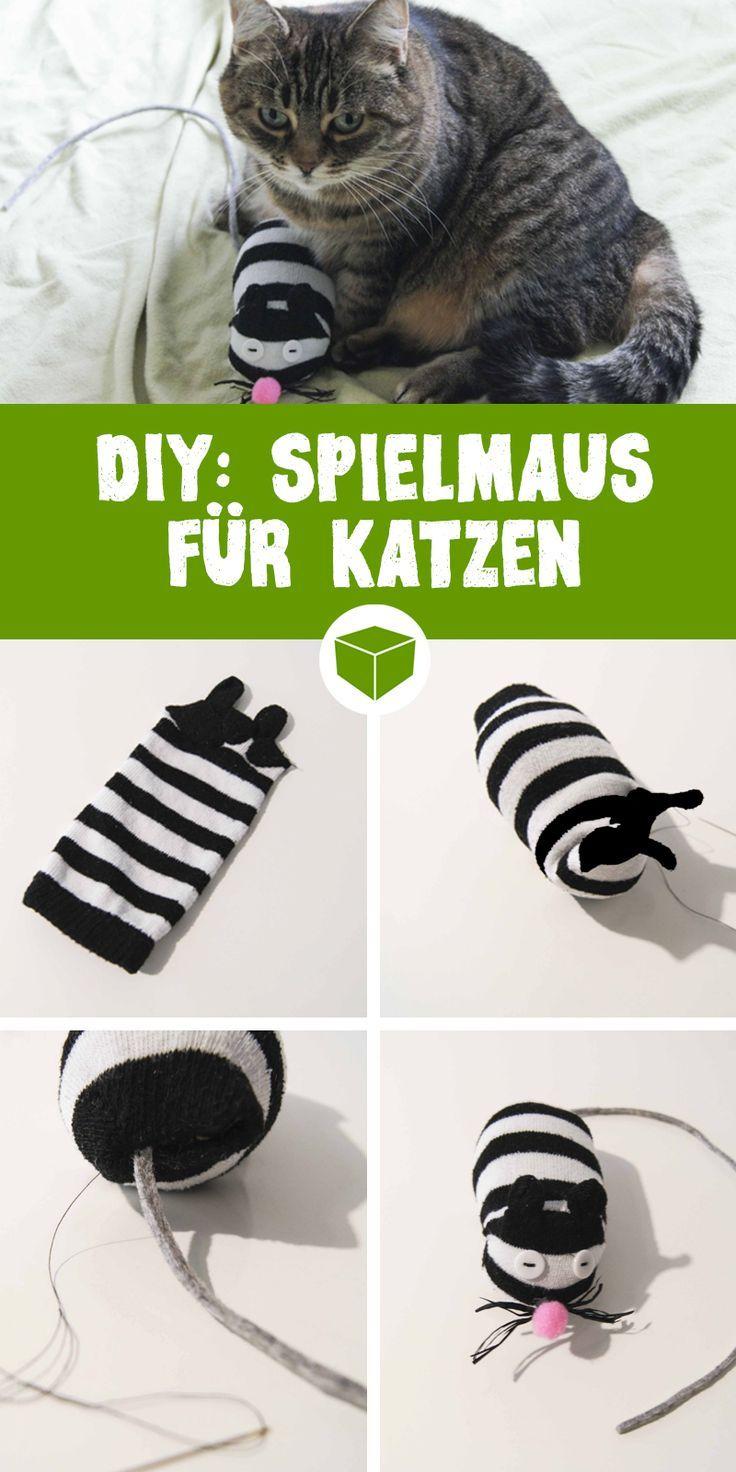 Haz un juguete para gatos tú mismo   – DIY Katzenspielzeug