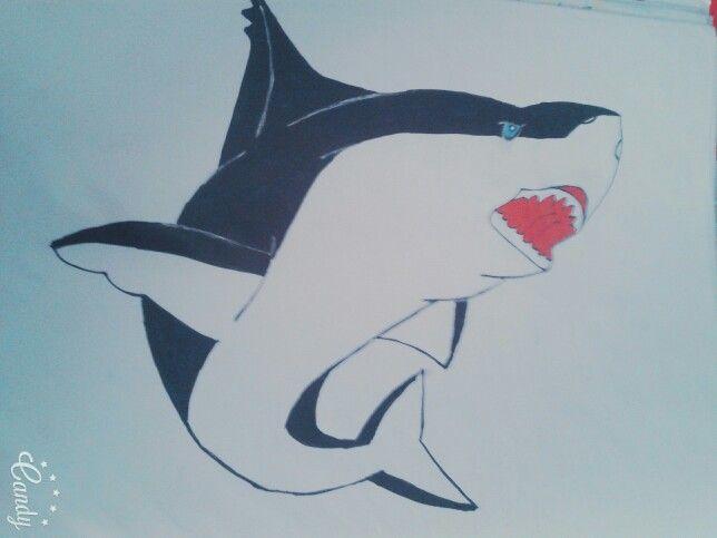 ♡ Big White SharK ♡