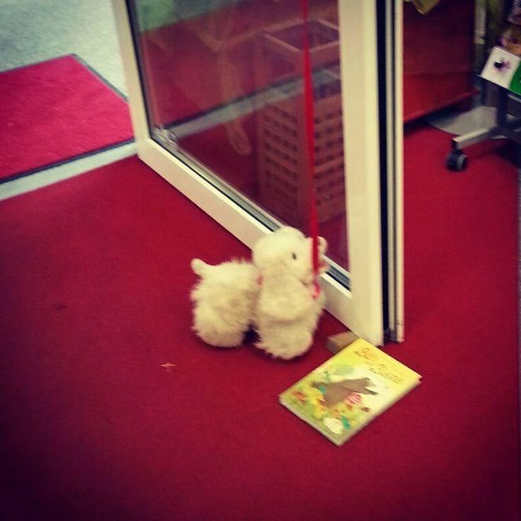 Diese #Geschichte aus unserer #Buchhandlung müssen wir mit euch teilen: . Ein kleiner Junge hat seinen Stoffhund  bei uns an der Tür angebunden. Dieser soll das Wunschbuch des Jungen bewachen während der Junge seine Mutter überredet das #Buch zu kaufen. . Es sind oft auch die kleinen Momente die unser Buchhändlerherz höher schlagen lassen.  . http://ift.tt/1niZsAX / www.radwer24.de . #lesen #bücher #freude #momente #kunden #radwer24 #books #bookstagram #bookstore #reading #hund