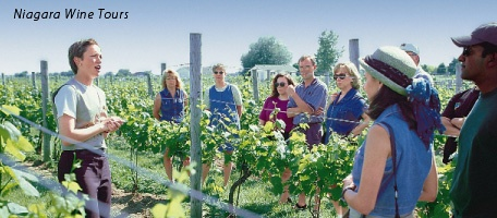 Winery experiences