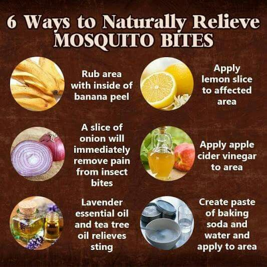 175 Best Images About Diy Sprays Bugs Repellant Home