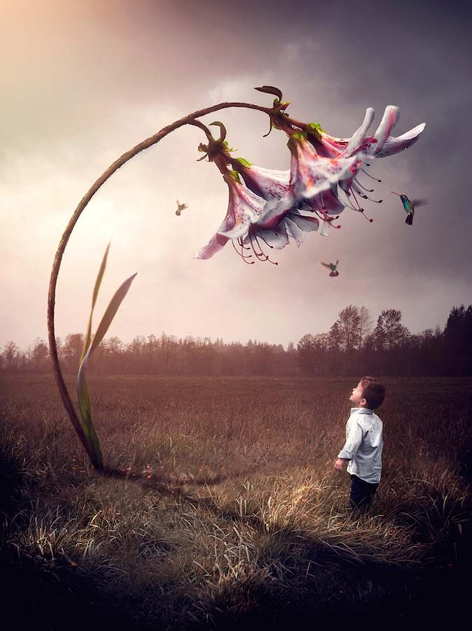 Bu fotoğrafçı sizleri üç küçük oğluyla yarattığı gerçeküstü dünyasına davet ediyor | Gaia Dergi
