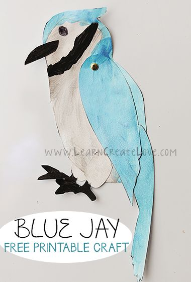 Blue Jay Printable Craft | LearnCreateLove.com