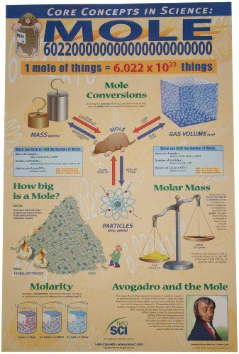 """Neo Sci Cornerstones of Chemistry with The Mole Laminated Poster, 23"""" Width x 35"""" Height - NEO SCI unique poster lays a graphic foundation for one of the cornerstones of chemistry the mole. Provides a clear and interesting presentation of Avogadro's law, the uniqueness of the mole, molarity, molality, molecular formulas, and everyday uses of the mole in science and industry. Includes a..."""