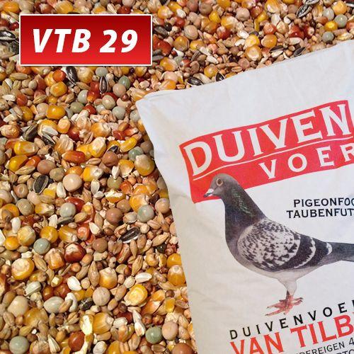 VTB_29