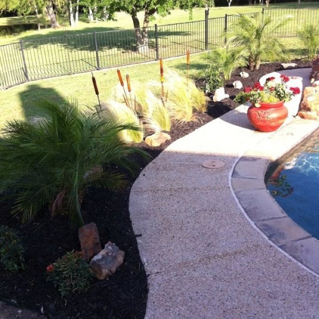 0b17380664ee23cb5d8c5ccfba00c5d4 House Plant Leaves Colored Striped on gourds plants, lavender plants, ground cover plants, flowers plants, green plants, types of croton plants, leafy patio plants,