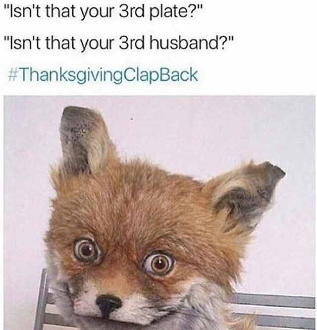 Funniest Thanksgiving Clap Back Memes (12 Photos)