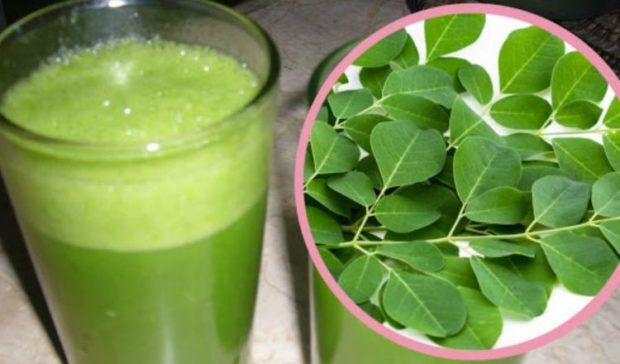drink   moringa   everyday   benefits   effects   blessings