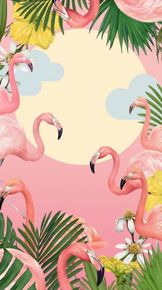 Resultado De Imagem Para Flamingo Bird Kertas Dinding Poster